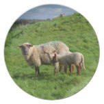 Sheep Family Plate