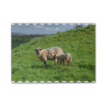 Sheep Family Post-it Notes