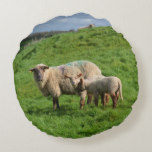 Sheep Family Round Pillow
