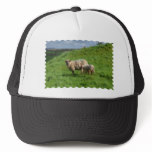 Sheep Family Trucker Hat