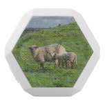 Sheep Family White Bluetooth Speaker