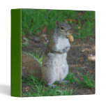 Silly Squirrel Binder