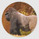 Silverback Gorilla Photo Sticker