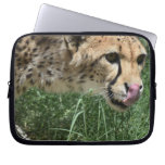 Sleek Cheetah Cat on a Rock Laptop Sleeve