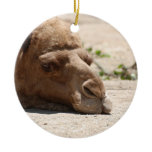 Sleeping Camel Ceramic Ornament