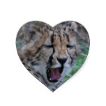 Sleepy Cheetah Cub Heart Sticker