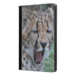Sleepy Cheetah Cub iPad Air Case