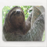 Sloth Photo Design Mouse Pad