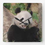 Smiling Panda Bear Square Wall Clock