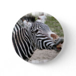 Smiling Zebra Button