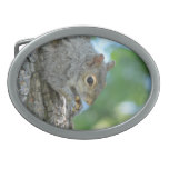 Squirrel Hanging in A Tree Belt Buckle