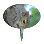 Squirrel Hanging in A Tree Cake Topper
