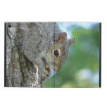 Squirrel Hanging in A Tree Case For iPad Air
