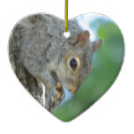 Squirrel Hanging in A Tree Ceramic Ornament