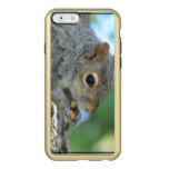 Squirrel Hanging in A Tree Incipio Feather Shine iPhone 6 Case