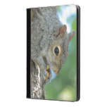Squirrel Hanging in A Tree iPad Air Case