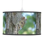 Squirrel Hanging in A Tree Pendant Lamp