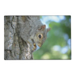 Squirrel Hanging in A Tree Placemat