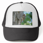 Squirrel Hanging in A Tree Trucker Hat