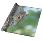 Squirrel Hanging in A Tree Wrapping Paper
