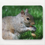 Squirrel with Nut Mouse Pad