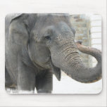 Trumpeting Elephant Mouse Pad
