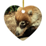 White Nosed Coati Ornament