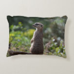 Wild Meerkat Decorative Pillow