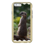 Wild Meerkat Incipio Feather Shine iPhone 6 Case