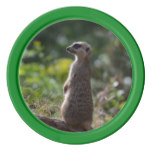 Wild Meerkat Poker Chips Set