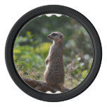 Wild Meerkat Set Of Poker Chips