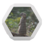 Wild Meerkat White Bluetooth Speaker