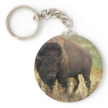 Wood Bison Keychain