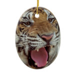 Year of Tiger Ornament