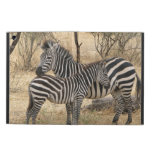 zebra-15.jpg iPad air case