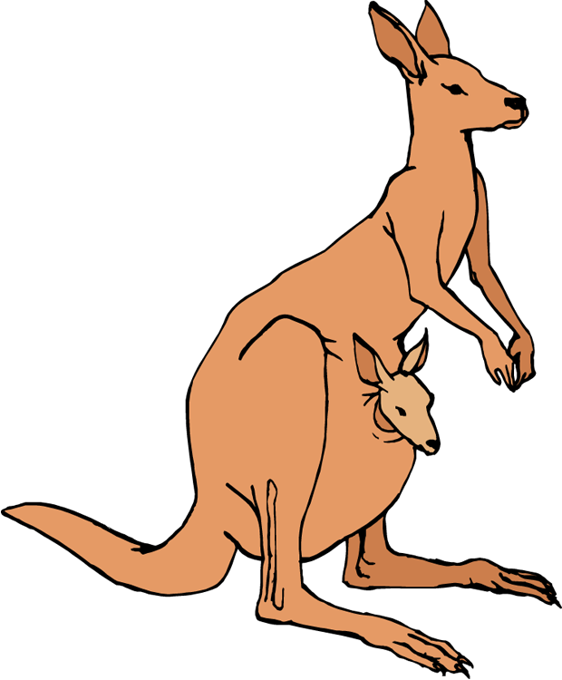 principal kangaroo clipart rh worldartsme com kangaroo clip art free kangaroo clip art free download